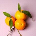 Mandarin olie - æterisk