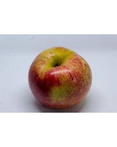 Æble fra Sydfyn