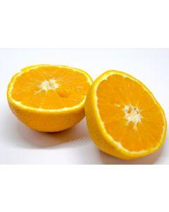 Appelsin olie til fødevare